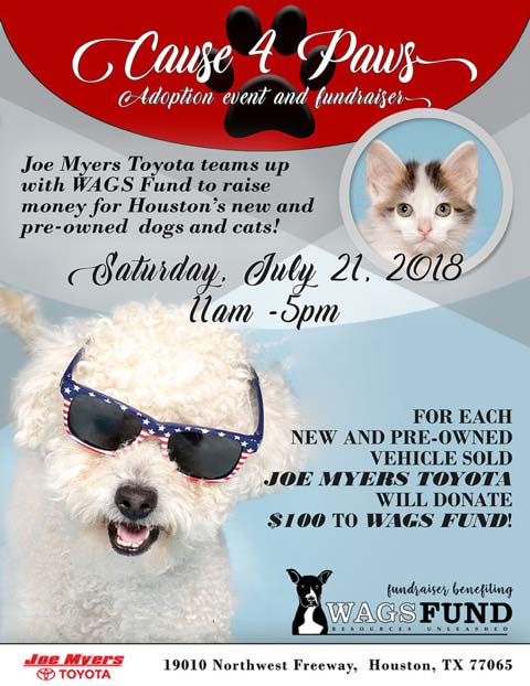 cause-4-paws-fundraiser-flyer-72dpi